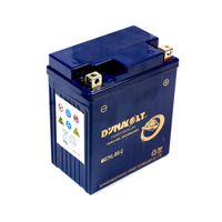 Pentora Quad Bike Battery