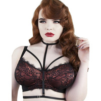 PPFB3057R Playful Promises Irena Underwired Satin And Lace Fuller Bust Bra With Harness PPFB3057R Rust