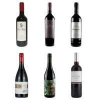 Vegan Red Wine Case