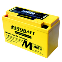 Quad Bike Battery