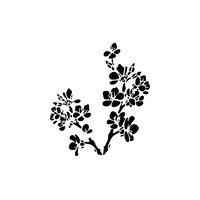 13 x 13cm Reusable Stencil - Blossom (1pc)