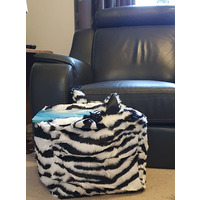 Zebra, Novelty Bean Cube