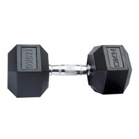 Image of DKN 17.5 kg Rubber Hex Dumbbell