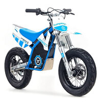torrot-s12-48v-61cm-electric-kids-supermoto-mini-bike