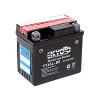EGL 110 Quad Bike Battery