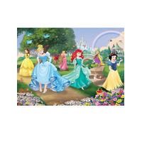 Disney Princess, Designer Wallpaper Mural