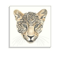 Safari Leopard Canvas Art 40 x 40 cm