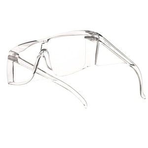 Bolle Visitors Safety Glasses