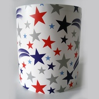 Shooting Stars Light Shade