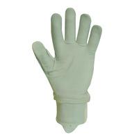 Granite 5 Beta Dry Gloves