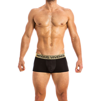 Click to view product details and reviews for Modus Vivendi Festive Boxer.