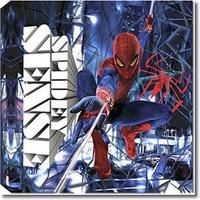 Spiderman Canvas - Spidey Sense, 30 x 30 cm