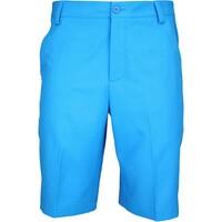 Puma Tech Golf Shorts Cloisonné AW15