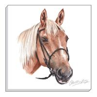 Horse Canvas Art, 40 x 40 cm