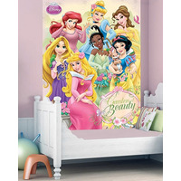 Disney Princess Wall Mural - 158 x 232 cm