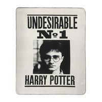 Harry Potter Throw