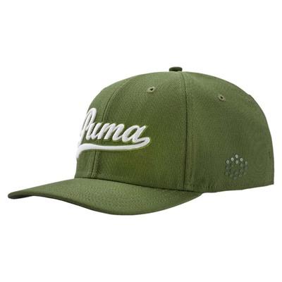 Puma Golf Cap Script Pre Curved Forest Night AW16