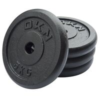 Image of DKN Cast Iron Standard Weight Plates - 4 x 5kg