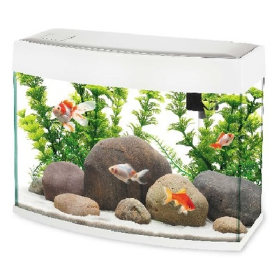 Fish 'R' Fun Panoramic Slim Bow Front Fish Aquarium 20L
