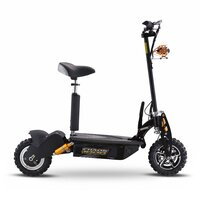 Chaos 48v 1000w Hub Drive Off Road Adult Electric Scooter