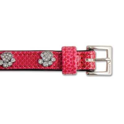 Ancol Sparkly Paw Crock Leather Collars
