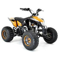 Image of EGL Madmax 110cc Black Kids Sports Quad Bike