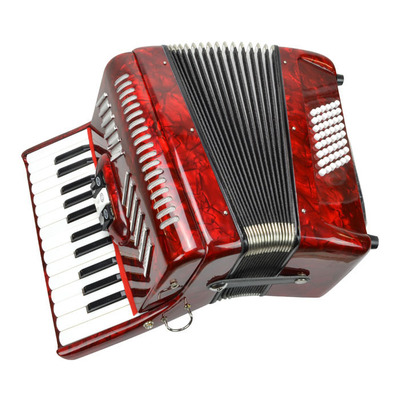 Piano Accordion 48 Bass 26 Keys