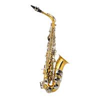 Student Alto Saxophone & Case