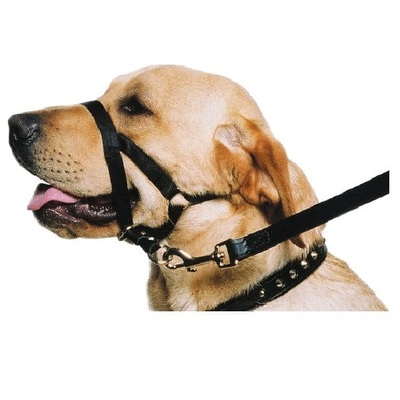 Ancol Nylon Training Halter / Halti