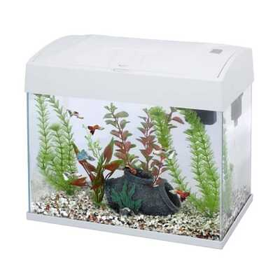 Fish 'R' Fun Rectangular Tank 20L