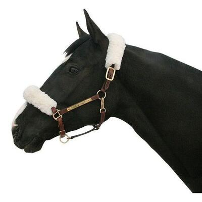 Back on Track® Equine / Horse Halter Cover - White One Size