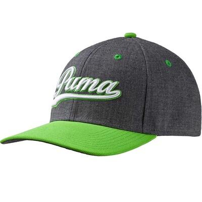 Puma Golf Cap Script Pre Curved Grey Green Gecko SS16