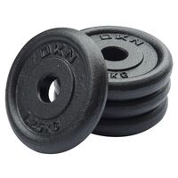 Image of DKN Cast Iron Standard Weight Plates - 4 x 1.25kg