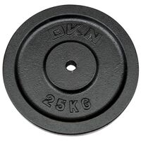 Image of DKN Cast Iron Standard Weight Plates - 1 x 25kg