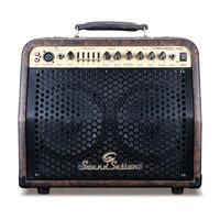 Tumbleweed 30 Watt Acoustic Amplifier
