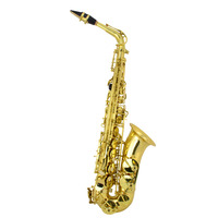 Alto Saxophone Professional Grade With Case