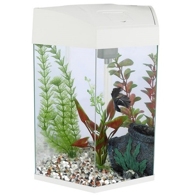Fish 'R' Fun Hexagonal Fish Tank 21.6L