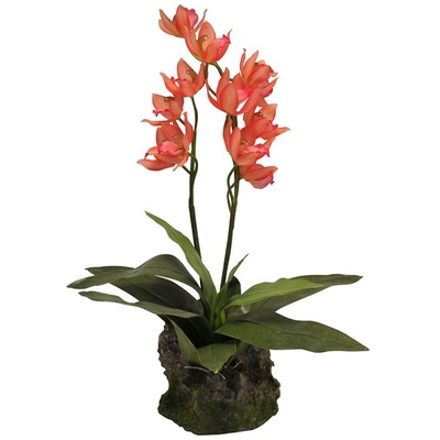 Lucky Reptile Upright Orchid – Red