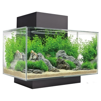 Fluval Edge 2.0 LED Aquarium Kit 23L
