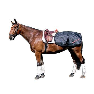Back on Track® Equine/Horse Loin Rug/Quarter Sheet - 135cm Black