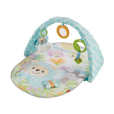 Fisher Price Butterfly Dreams Musical Playtime Gym