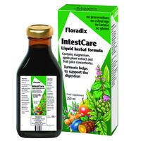 Floradix-IntestCare-Liquid-Herbal-Formula-250ml