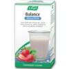 Image of A.Vogel Balance Mineral Drink 21 Sachets