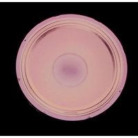 Cobra Audio 400 Watt Bass Speaker Driver 15 Inch