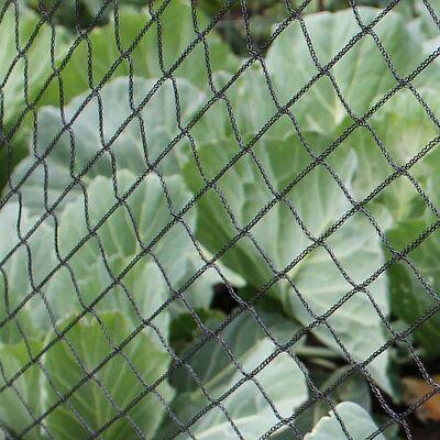 Anti Bird Netting for Fruit & Vegetable Protection