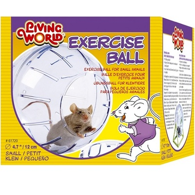 Living World Exercise Ball