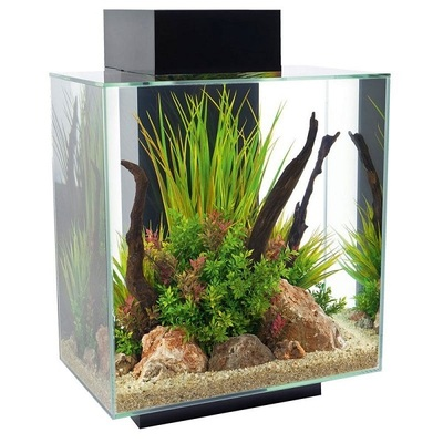Fluval Edge 2.0 LED Aquarium Kit 46L
