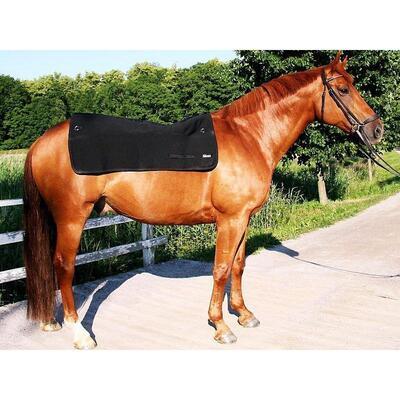 Back on Track® Standard Horse / Equine Back Warmer - Black 100cm x 100cm