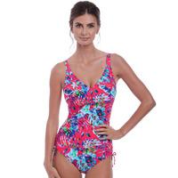 Fantasie Fiji V-Neck Swimsuit