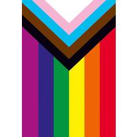Progress Pride Flag Fridge Magnet